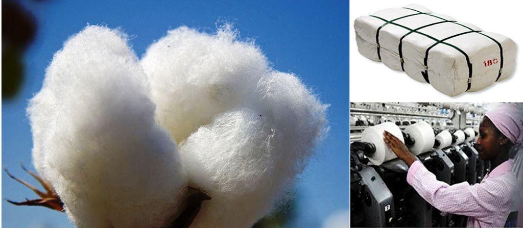 Ethiopia imports cotton to meet demand